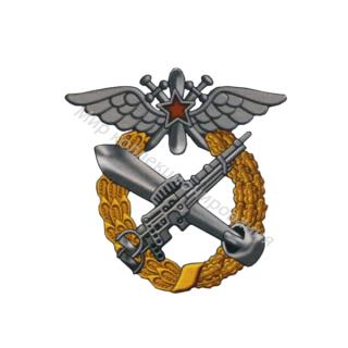 «Военная школа морских летчиков»