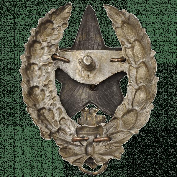 Знак командира Речной флотилии Рабоче-Крестьянской Красной Армии