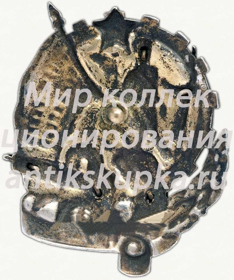 Знак «Герою Революционного движения 1917-1918 гг.» 10