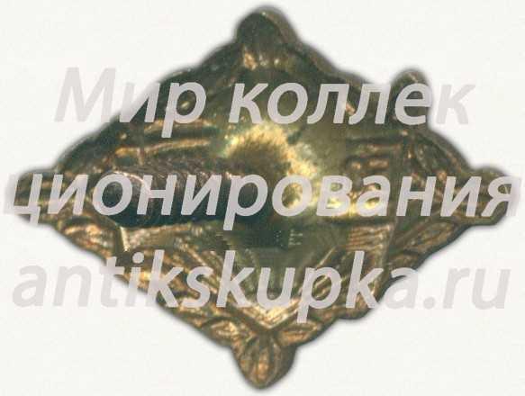 Членский знак ДСО «Большевик». Тип 2