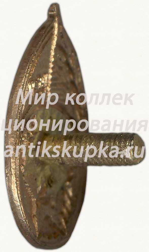 Членский знак ДСО «Красная звезда». Тип 1 2