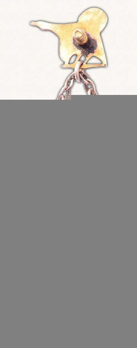 Жетон «Райскумская школа лесного хозяйства (RMS). II выпуск. 1963»