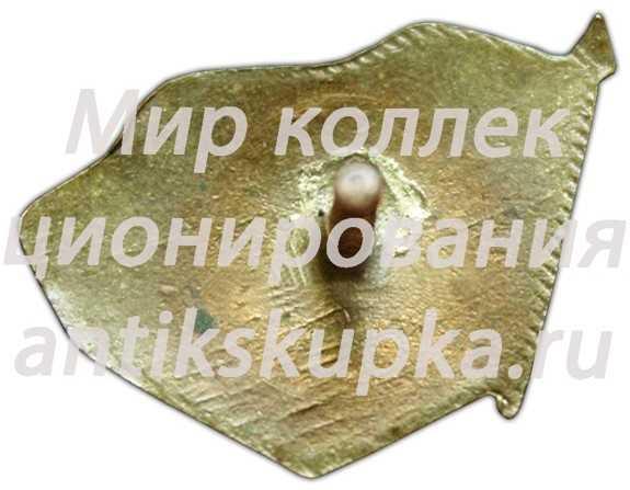 Знак 1-ой всесоюзной спартакиады ДСО (Добровольное Спортивное Общество) Наука
