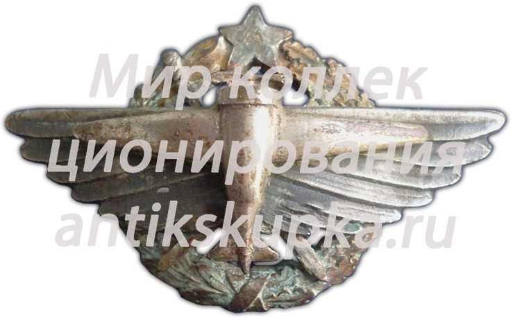 Знак «7 военная школа летчиков»