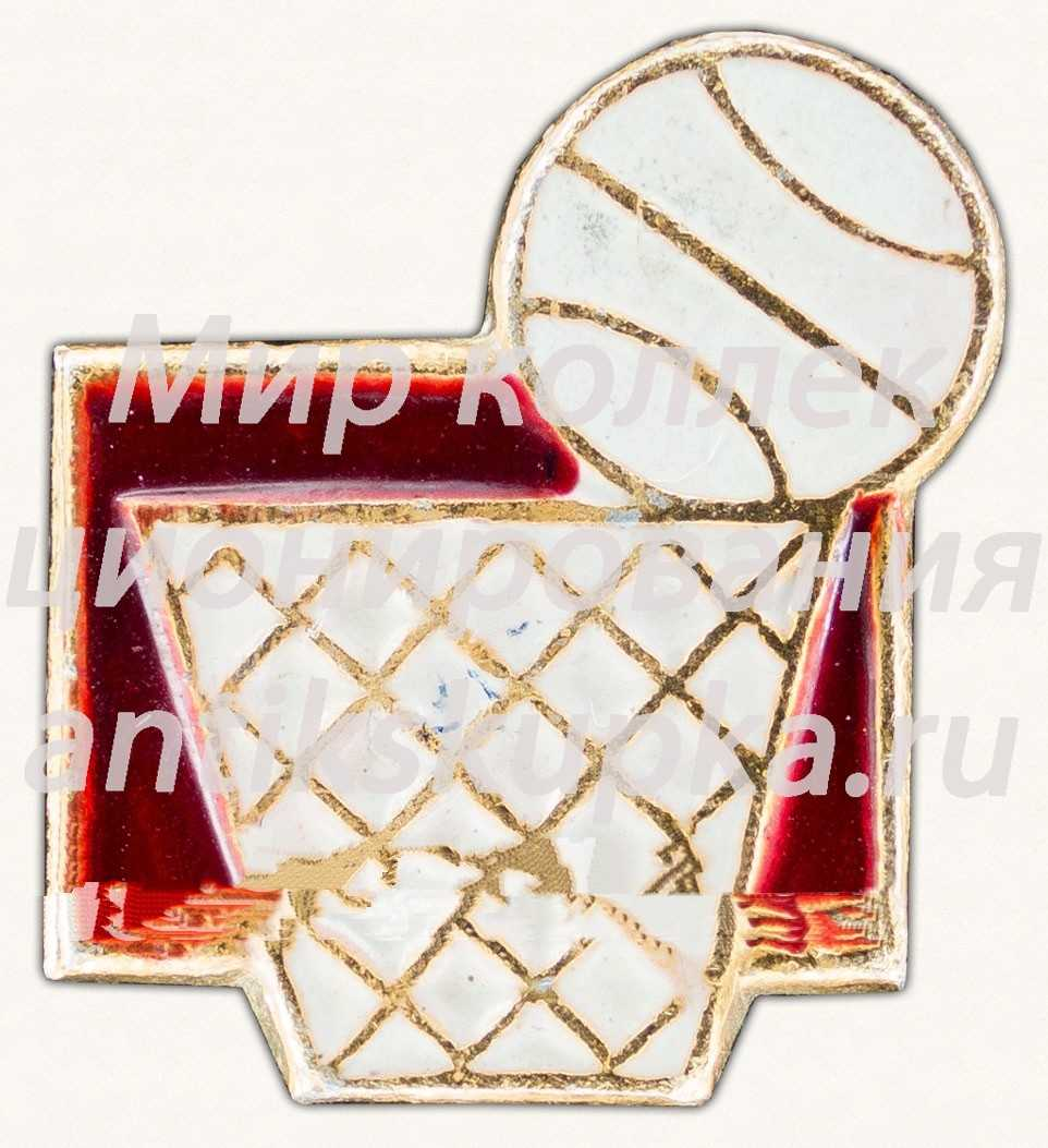 Знак «Баскетбол. Спорт. Тип 3»