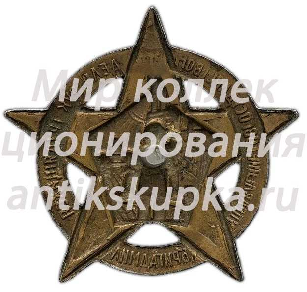 Знак «Бригады содействия милиции. БРИГАДМИЛ»