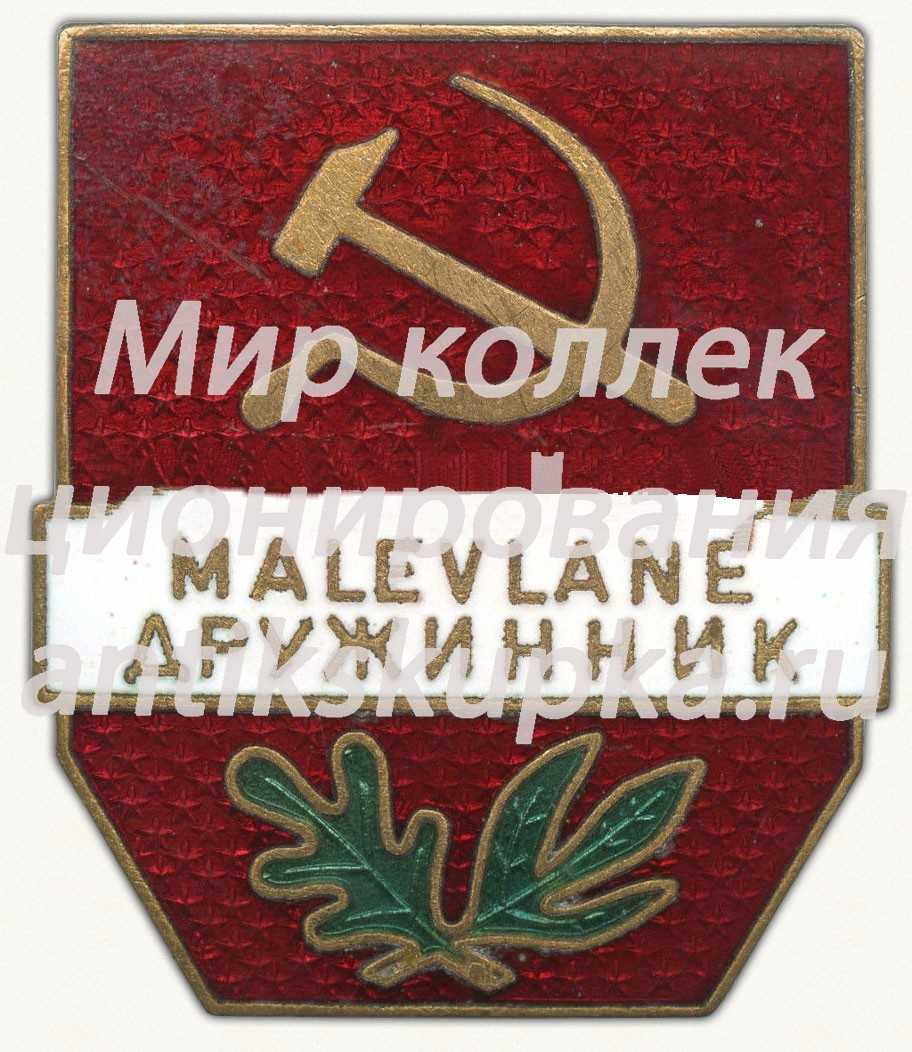 Знак «Дружинник (Malevlane)» 5
