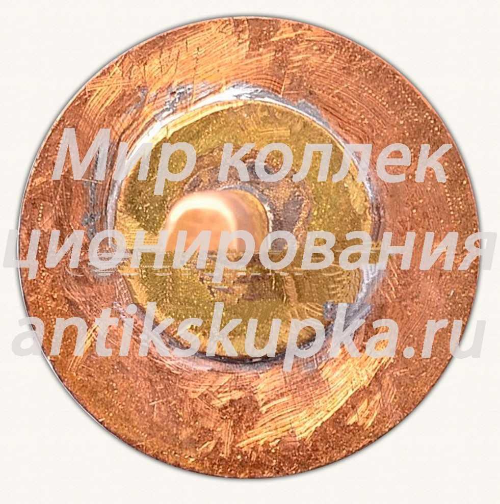 Знак «ДСО «ИЫУД». Олимпийские кольца»