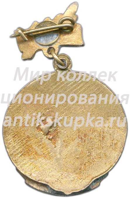 Знак «Спартакиада. Областной совет. Хоккей с шайбой. 2 место. 1964»