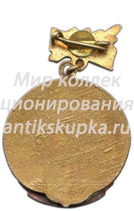 Знак «Спартакиада. Областной совет. Хоккей с шайбой. Чемпион. 1964»
