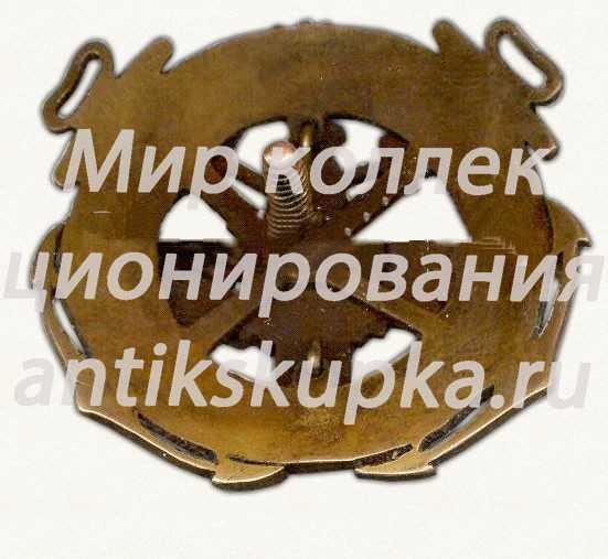 Знак «V лет пожарной охране петр. в. порт. 1917-1922»
