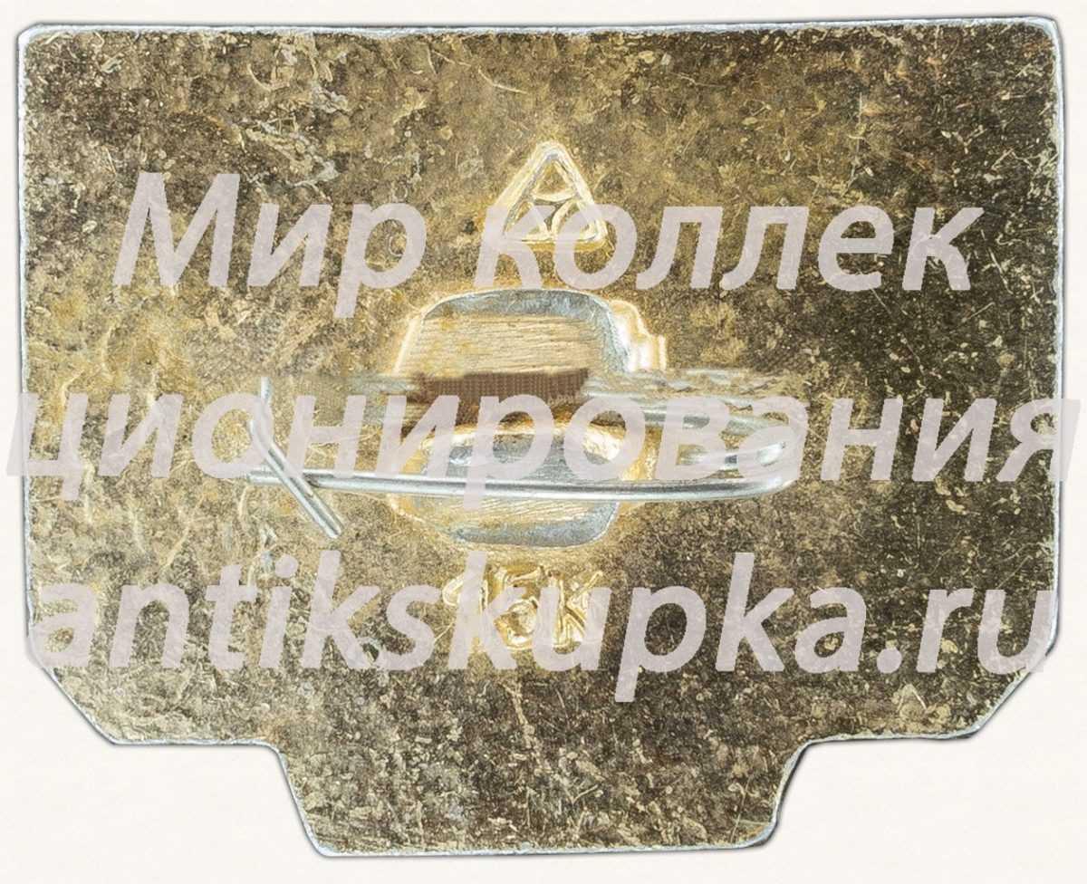 Знак «60 лет СССР (1922-1982)»