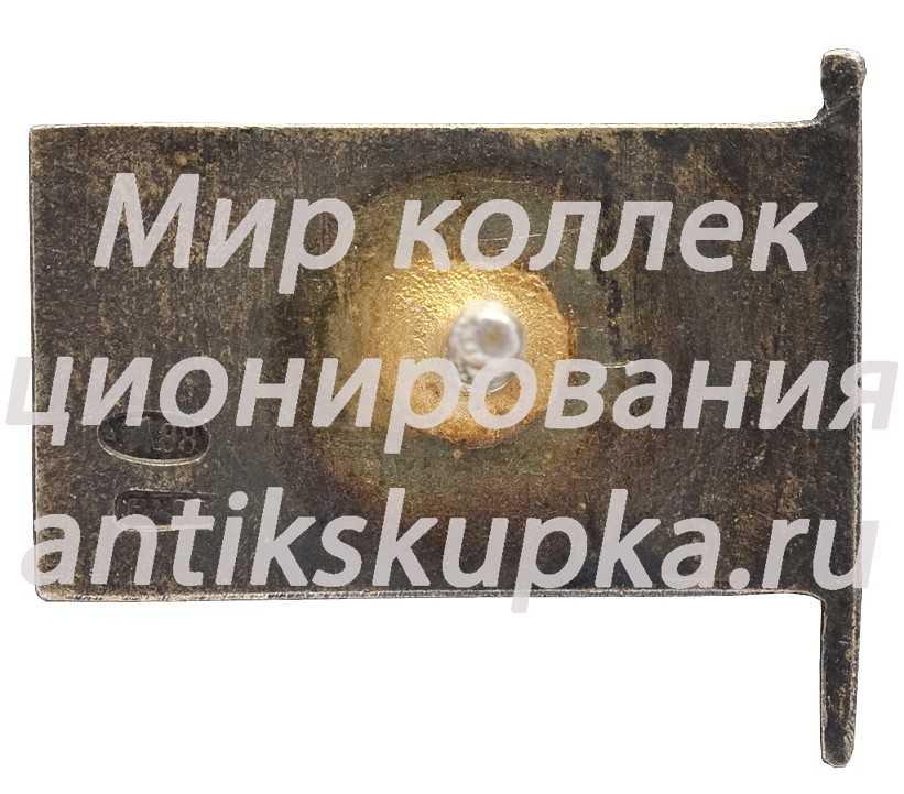 Знак «Член ЦИК Чувашской АССР»