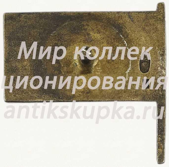 Знак депутата 1-го созыва ЦИК (Центральный исполнительный комитет) Таджикской АССР