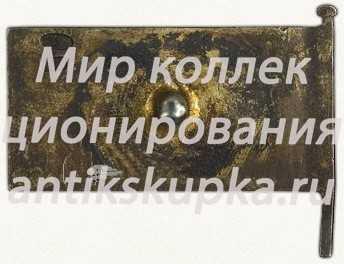 Знак депутата ЦИК (Центральный исполнительный комитет) Башкирской АССР